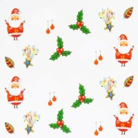 Santa And Holly Water Decal 162