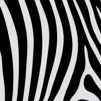 Zebra Print A4 Mat