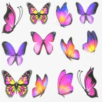 Butterfly Water Decal Design 001
