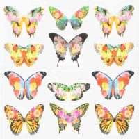 Butterfly Water Decal Design 004