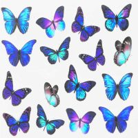 Butterfly Water Decal Design 010