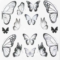 Butterfly Water Decal Design 016