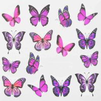 Butterfly Water Decal Design 999