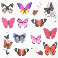 Butterfly Water Decal Design 1000