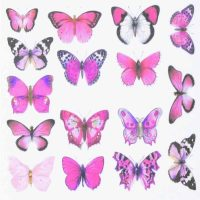 Butterfly Water Decal Design 985