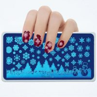 Christmas Snowflake Stamping Plate Design 014