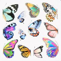 Butterfly Water Decal Design 1003