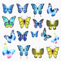 Butterfly Water Decal Design 1009