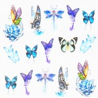 Butterfly Water Decal Design 1011
