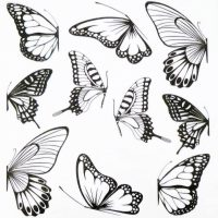 Butterfly Water Decal Design 1017