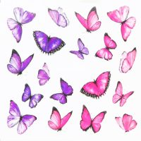 Butterfly Water Decal Design 997