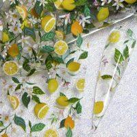 Fruit Nail Transfer Foil Design 3